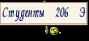 Студенты 206 Э