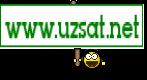 www.uzsat.net