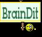 BrainDit