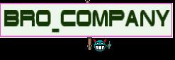 Bro_Company