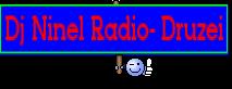 Dj Ninel Radio- Druzei