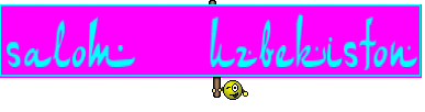 salom  uzbekiston