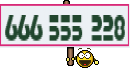 666 555 228
