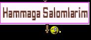 Hammaga Salomlarim