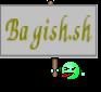 Bagish.sh