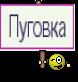 Пуговка