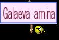 Galaeva amina