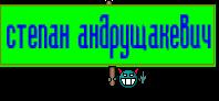 степан андрущакевич