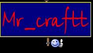 Mr_craftt