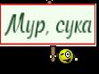 Мур, сука