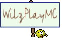 WilzPlayMC