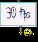 30 fps