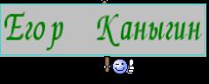 Егор Каныгин