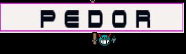 ░▒▓█ P E D O R █▓▒░