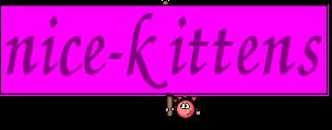 nice-kittens