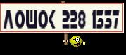 ЛОШОК 228 1337