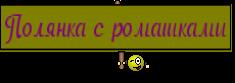 Полянка с ромашками