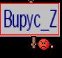 Bupyc_Z