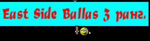 East Side Ballas 3 ранг.