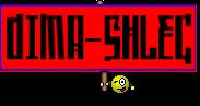 DIMA-SHLEG