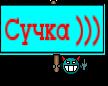 Сучка )))