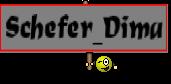 Schefer_Dima