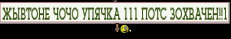 ЖЫВТОНЕ ЧОЧО УПЯЧКА 111 ПОТС ЗОХВАЧЕН!!1
