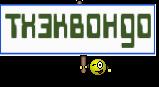 тхэквондо