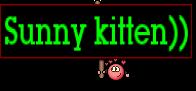 Sunny kitten))