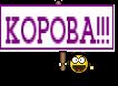 КОРОВА!!!