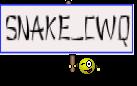 SNake_cwq